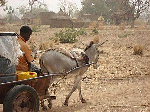 Dagelijkse leven in Burkina Faso